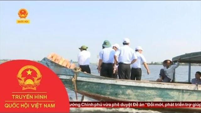 Thời sự - Thừa Thiên Huế: Nhiều Khó Khăn Trong Thực Thi Pháp Luật Về Thủy Sản