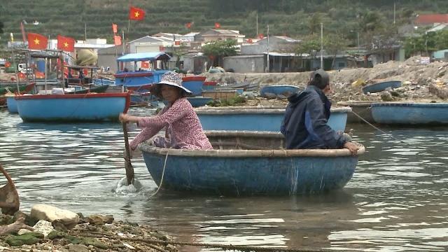 Quảng Ngãi: Sinh kế cho người dân vùng bảo tồn biển Lý Sơn