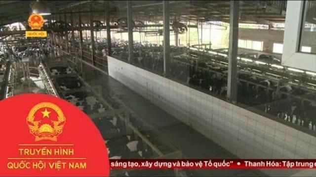 Thời sự - Chuyển Giao Công Nghệ: Cơ Hội Và Thách Thức Với Doanh Nghiệp Việt Nam