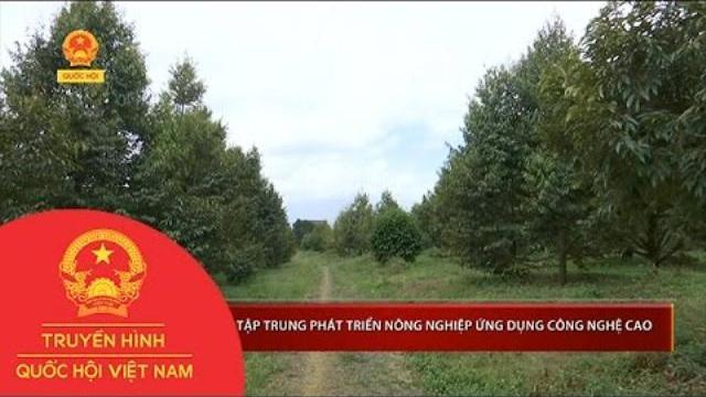 Đắk Nông: Tập trung phát triển nông nghiệp ứng dụng công nghệ cao