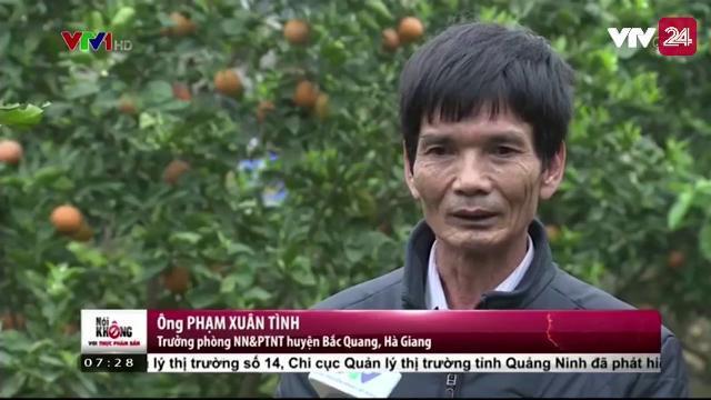 Cam chanh Hà Giang - Ngon, Bổ, Rẻ | VTV24