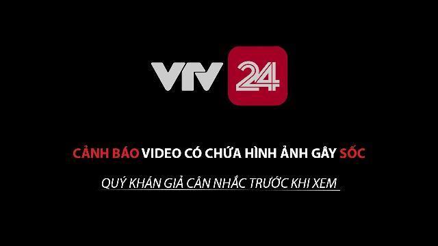 Báo động tình trạng xác lợn chết vứt tràn lan tại Hà Nam | VTV24