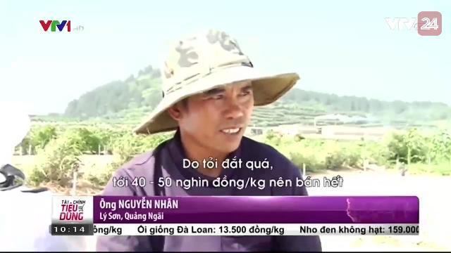 Nông Dân Đảo Lý Sơn Ồ Ạt Bán Tỏi - Tin Tức VTV24