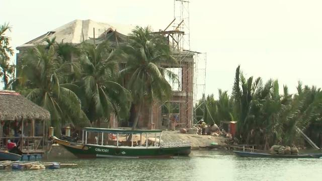 Rừng dừa ở vùng đệm Khu dự trữ sinh quyển thế giới Cù Lao Chàm bị lấn chiếm trái phép