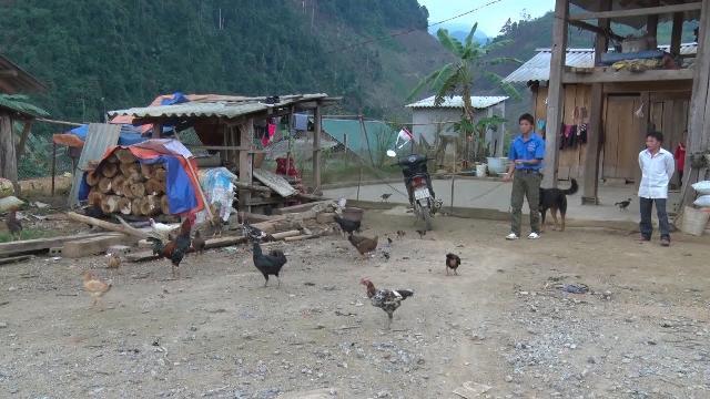 Lào Cai phát huy vai trò thanh niên xung kích tại làng thanh niên biên giới Lùng Vai