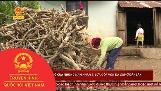 Thời sự - Nỗi khổ của những nạn nhân bị lừa góp vốn đa cấp ở Đắk Lắk