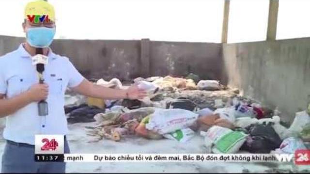 Công Cuộc Xử Lý Xác Lợn Chết Tại Hà Nam - Tin Tức VTV24
