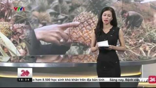 Nhà máy luyện kim phải đền bù thiệt hại cho bà con trồng dứa | VTV24