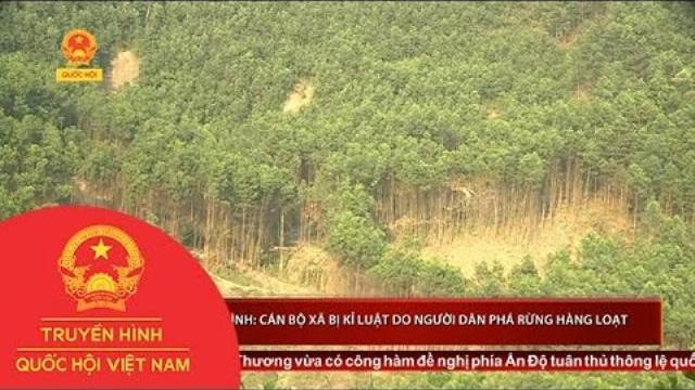 Thời sự - Quảng Bình: Cán bộ xã bị kỉ luật do người dân phá rừng hàng loạt