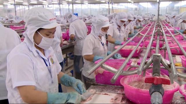 Tin tức 24h: Đề nghị Mỹ công nhận tương đương cho cá tra Việt Nam