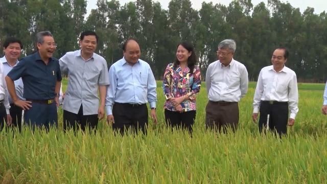 Phát triển nông nghiệp hữu cơ, nông nghiệp sạch, giá trị cao và ứng dụng KHCN vào sản xuất