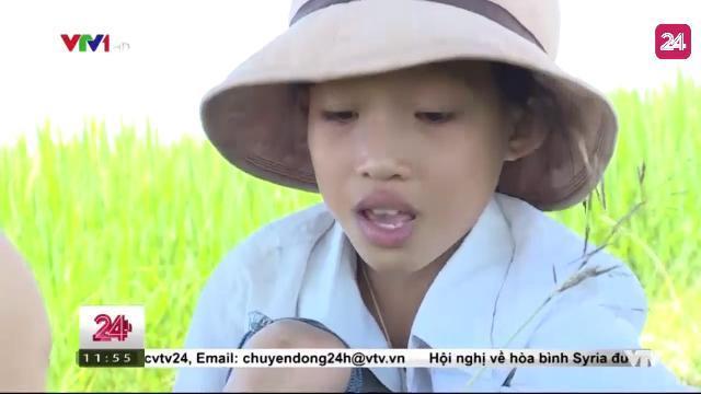 Cặp Lá Yêu Thương: Hai Đứa Trẻ - Tin Tức VTV24