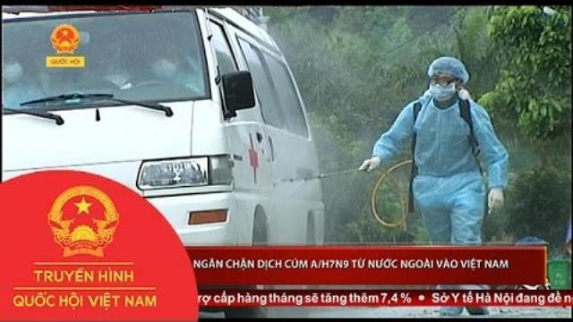 Thời sự - Nỗ lực ngăn chặn dịch cúm A/H7N9 từ nước ngoài vào Việt Nam