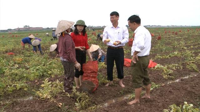 Ninh Bình: Yên Khánh đẩy mạnh liên kết trong sản xuất nông nghiệp