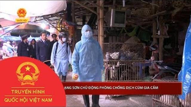 Thời sự - Lạng Sơn chủ động phòng chống dịch cúm gia cầm
