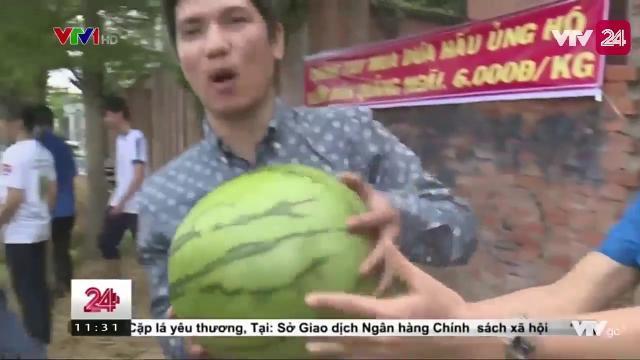 Giải cứu dưa miền Trung | VTV24