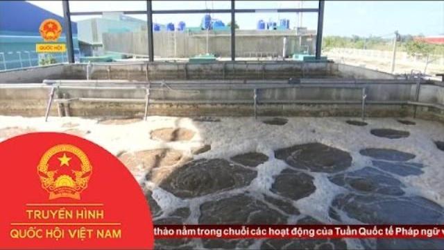 Thời sự - Quảng Nam: Chú Trọng Bảo Vệ Môi Trường Trong Các Khu Công Nghiệp