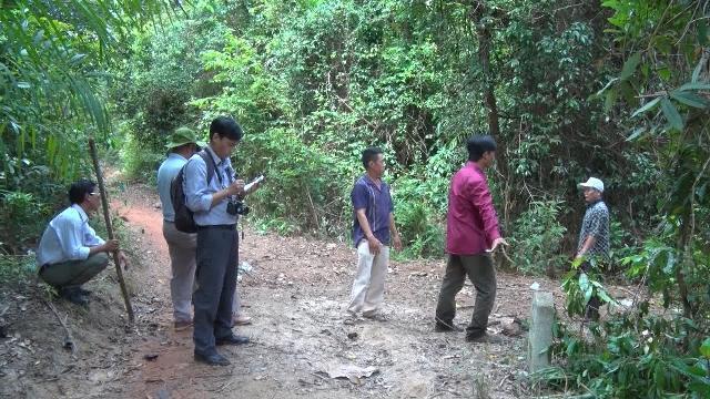 Thanh tra việc thực hiện chuyển mục đích sử dụng rừng và đất lâm nghiệp tại Phú Yên