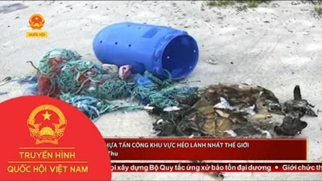 Rác thải nhựa tấn công khu vực hẻo lánh nhất thế giới   Thời sự   THQHVN
