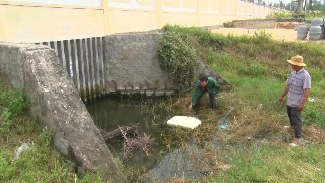 Phú Yên khắc phục hậu quả ô nhiễm môi trường tại Khu công nghiệp An Phú