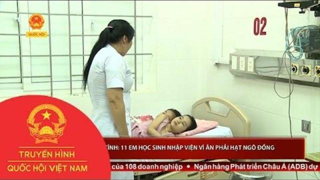 Thời sự - Hà Tĩnh: 11 em học sinh nhập viện vì ăn phải hạt ngô đồng
