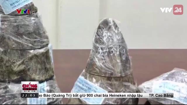 Thu giữ sừng tê giác nhập lậu qua đường hàng không | VTV24