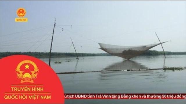 Thời sự - Hồ Dầu Tiếng - Tây Ninh : Nguy Cơ Đánh Bắt Tận Diệt Thủy Sản Và Cản Trở Giao Thông
