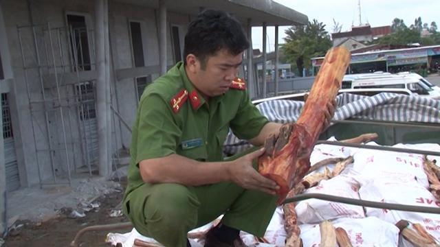 Quảng Ngãi bắt giữ xe container chở 20 tấn gỗ không rõ nguồn gốc
