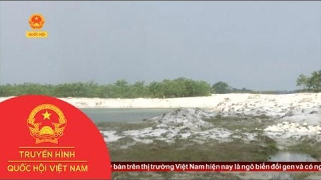 Thời sự - Cần Tăng Cường Giám Sát Khai Thác Cát Trắng Tại Thừa Thiên Huế