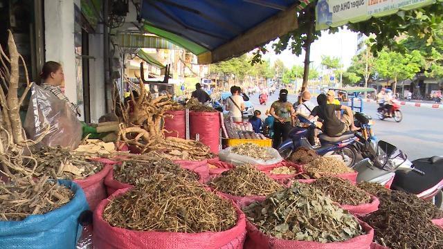 Phóng Sự Việt Nam mới nhất 2017: Bất cập thị trường thuốc Đông y