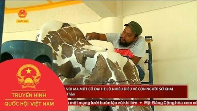 Thời sự - Mexico: Hoá thạch voi ma mút cổ đại hé lộ nhiều điều về con người sơ khai