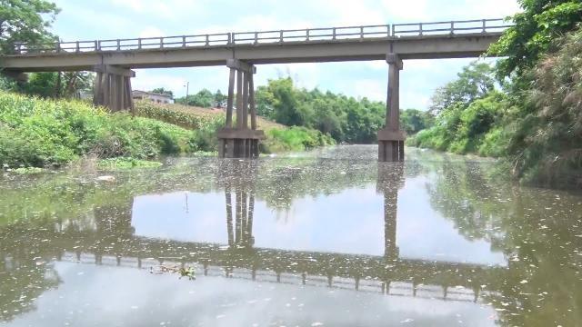 Quảng Nam cần sớm làm rõ nguyên nhân dòng nước ô nhiễm và cá chết ở khe Đá Mài
