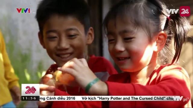 CHUYỆN LÀM ANH CỦA CẬU BÉ MỒ CÔI CHA | VTV24