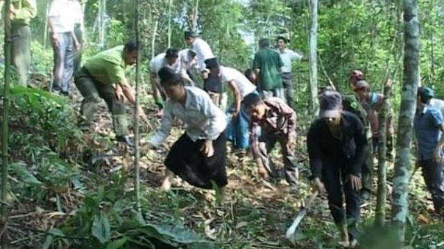 Người Mông phá rừng, bắt kiểm lâm phơi nắng đòi yêu sách – An ninh với cuộc sống