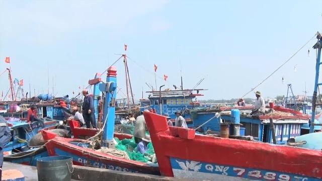 Quảng Ngãi: Gần 7.000 ngư dân tham gia các nghiệp đoàn nghề cá