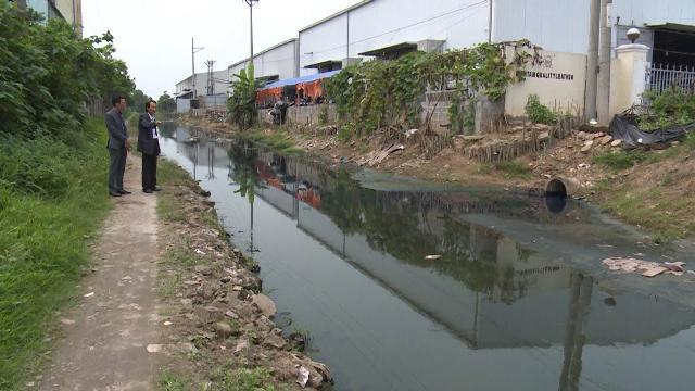 Nhức nhối tình trạng ô nhiễm môi trường ở cụm công nghiệp Di Trạch