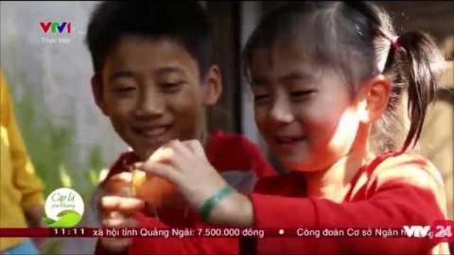Truyền hình trực tiếp Cặp lá yêu thương tại Thừa Thiên Huế | VTV24