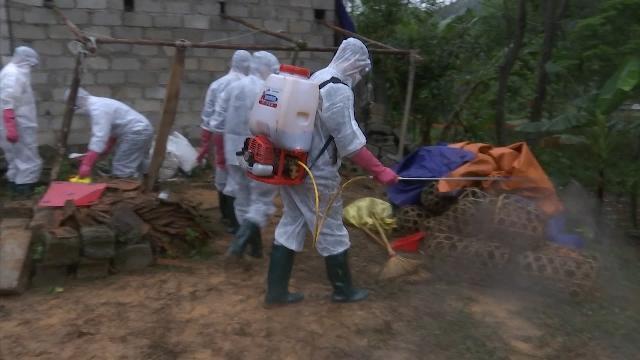 Nâng cao công tác truyền thông về phòng, chống dịch cúm gia cầm độc lực cao