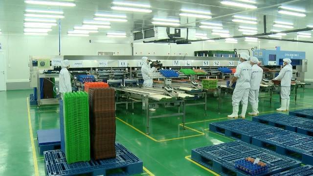 Ngành Nông nghiệp phải tổ chức lại sản xuất theo nhu cầu thị trường