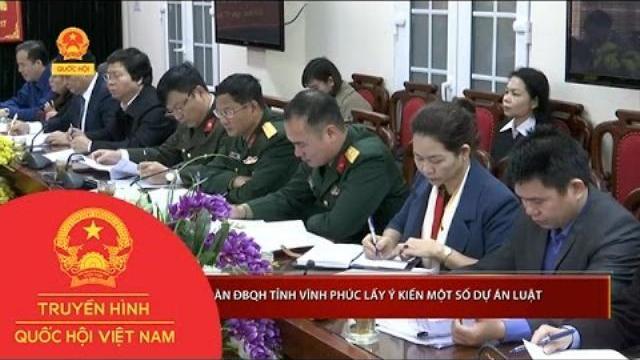 Thời sự - Đoàn Đại biểu Quốc hội tỉnh Vĩnh Phúc lấy ý kiến một số dự án Luật