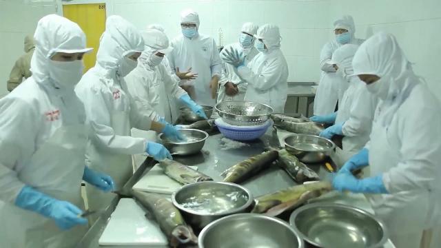 Nhiều doanh nghiệp xuất khẩu Việt Nam bị Mỹ hủy mã số kinh doanh