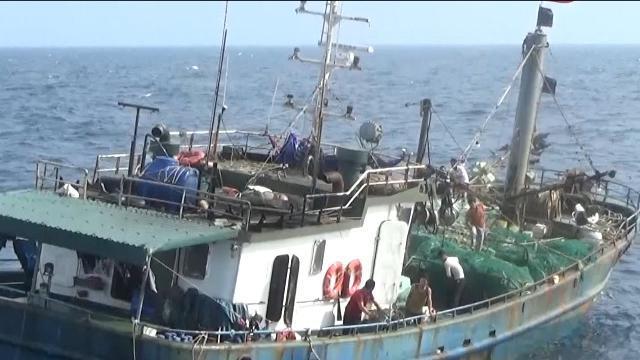 Tin tức 24h Mới Nhất: Cứu tàu cá cùng 9 ngư dân gặp nạn trên biển
