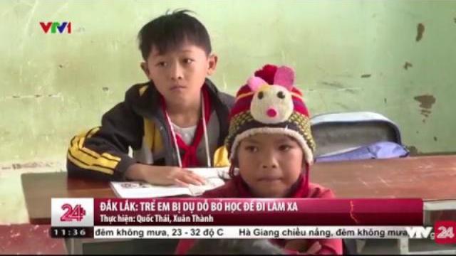 Tình trạng dụ dỗ lao động trẻ em đáng báo động ở Đắk Lắk | VTV24