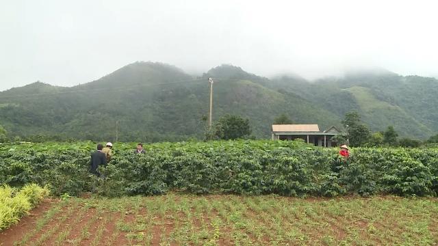 Hướng Hóa thực hiện lời căn dặn của Tổng Bí thư Lê Duẩn xây dựng huyện miền núi kiểu mẫu