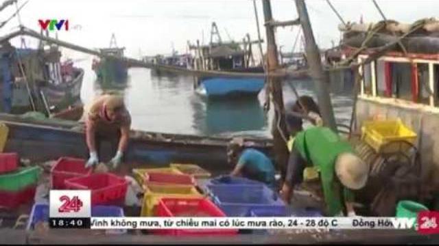 Nạn Giã Cào Trên Biển Bình Thuận - Tin Tức VTV24