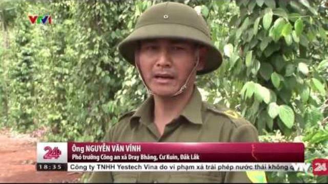 Bà con trồng hồ tiêu ở Đắk Lắk sẽ không còn phải lo lắng | VTV24