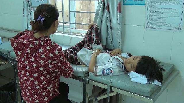 Hơn 50 học sinh tiểu học bị ngộ độc vì ăn quả ngô đồng ở Nghệ An