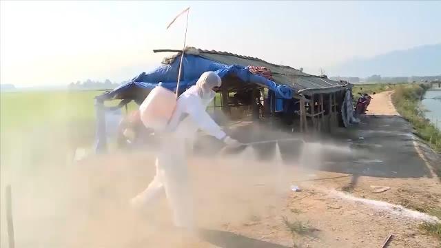 Ngăn chặn dịch cúm gia cầm H5N6 bùng phát tại Thừa Thiên - Huế