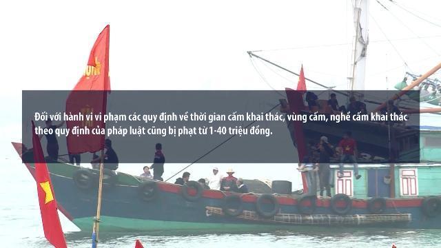 Tăng mức phạt đối với một số hành vi vi phạm trong hoạt động thủy sản