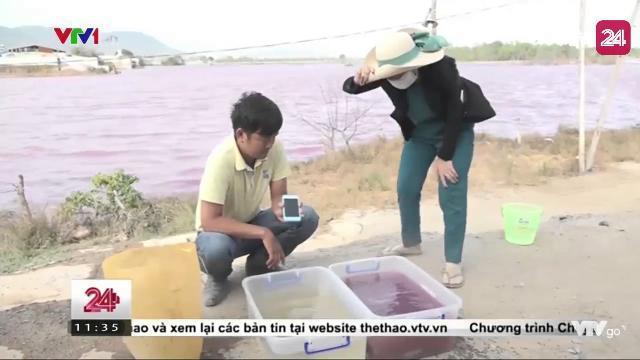 Clip:Thử nghiệm độ ô nhiễm của hồ Tân Hải | VTV24